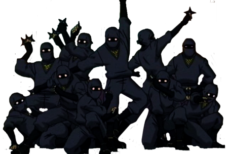 ninjas4501